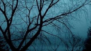 "Video thumbnail of ""Hector - Olet Lehdetön Puu"""