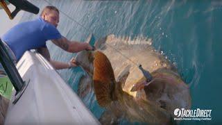 Рыбалка в морях и океанах рек озер разными способами