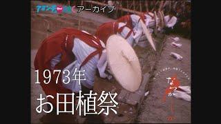 1973年 お田植祭【なつかしが】