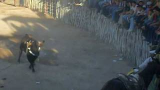 preview picture of video 'CORRIDA KANASIN MAYO 2009, CABALLO CORNEADO'