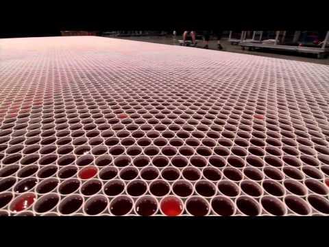 60000萬個杯子的藝術,鏡頭拉遠後讓所有人都大呼驚訝!
