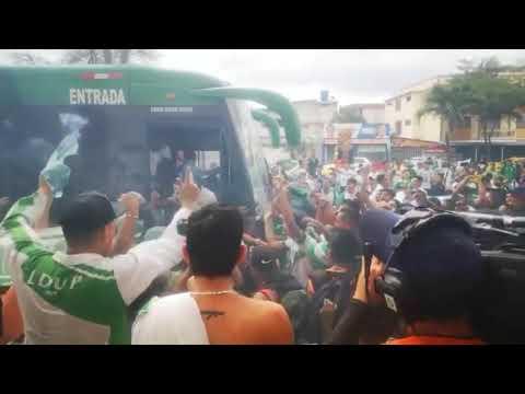 """Vamos liga"" Barra: Máfia Verde • Club: Liga de Portoviejo"