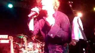 Adam Gregory--CrazyDays