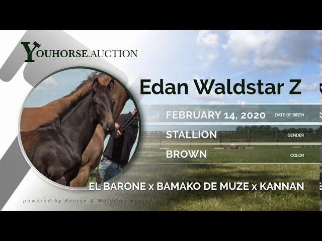 Edan Waldstar Z