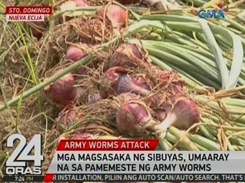 Kung paano ang kilala mo kung mayroong sa katawan ng parasitiko worm