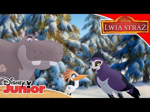 Lwia Straż ratuje Śnieżne Małpy   Lwia Straż   Disney Junior Polska