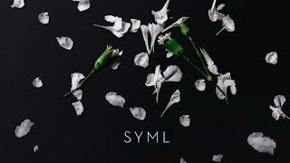 Musik-Video-Miniaturansicht zu Meant to Stay Hid Songtext von SYML