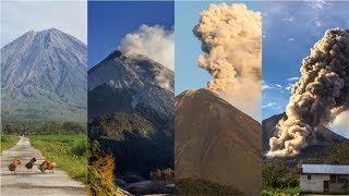 Mengenali 4 Tahapan Tanda Dan Status Level Gunung Sebelum Meletus