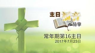 30主日福音分享-常年期16主日