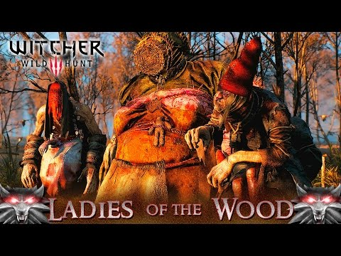 Witcher 3 ladies of the wood choices