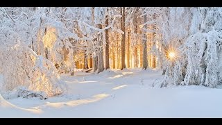 Tombe La Neige - PAUL MAURIAT