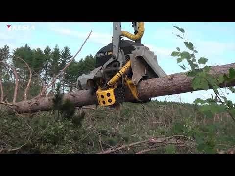 KESLA 29RH-II (topsaw) with Tigercat 1165