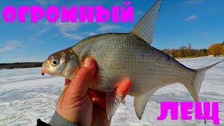 Летняя рыбалка с михалычем на леща