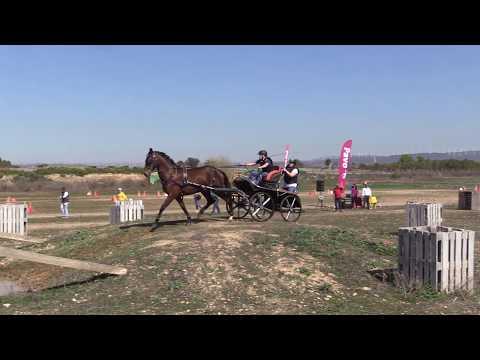 I Fase Cto Navarro Enganches Obstáculos 240319 Video 2