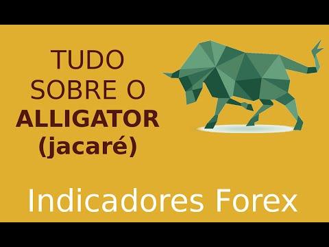 Теория торгов на рынке форекс