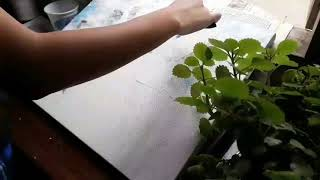 preview picture of video 'Sangai in the Blue | Acrylic Painting | Time Lapse'