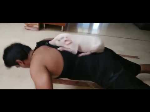 ravi-babu-workout-with-his-piglet-for-adhugo