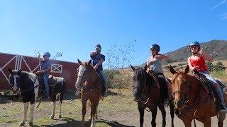 FEEDING OSTRICHES + MADONNA INN HORSES!