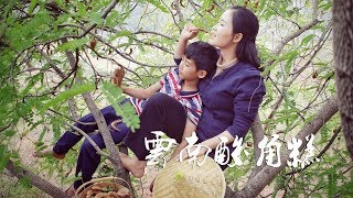 I climbed onto the tree to pick some tamarind fruits so that I can make tamarind cakes.