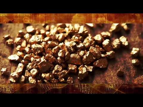 🔴 Willem Middelkoop | Gold | Real Vision™