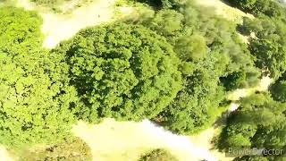 Diving trees and finding lines at a new spot | fpv freestyle | supafly flipmode