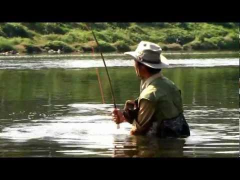 carp flyfishing Korea