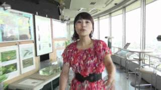 満腹ミキティの観光案内愛知県一宮市・ツインアーチ138