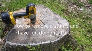 Easy Way To Remove Tree Stumps   Part 1