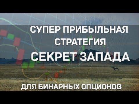 Михаил чекулаев финансовые опционы