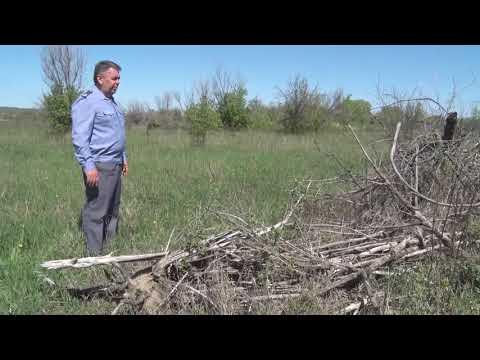 В Ростовской области Управлением Россельхознадзора выявлен земельный участок, длительное время не использовавшийся собственником для сельхозпроизводства