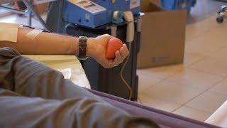Don du sang : attirer davantage de jeunes