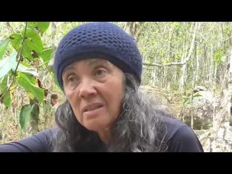 Shaman Alba Maria: Natureza