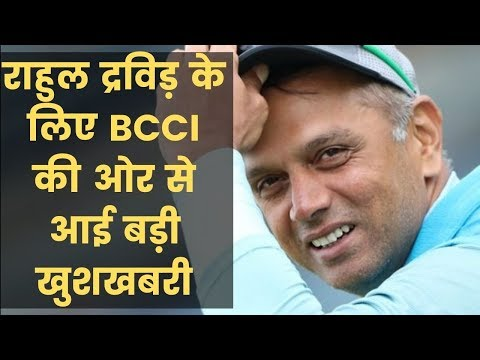 BCCI ethics officer DK Jain clean chit to Rahul Dravid in Conflict of Interest द्रविड़ को क्लीन चिट