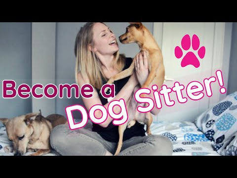 How to MAKE MONEY as a DOG SITTER | InRuffCompany.com