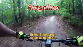 Ridgeline - DuPont State Forest - Cedar Mountain, NC