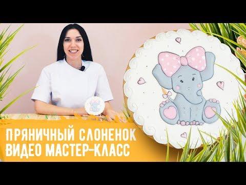 """Видео МК """"Пряничный слоненок"""". Роспись пряника в технике пайпинг"""