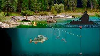 Рыбалка в карелии на что ловят