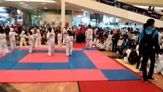 Taekwondo Sdn Sukasari 6