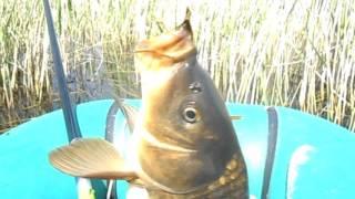 Озера челябинской области рыбалка урефты