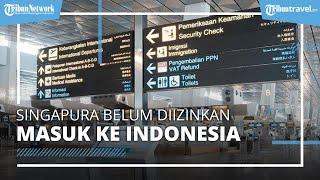 Pemerintah Izinkan 18 Negara Masuk Indonesia Kecuali Negara Singapura, Ini Alasannya
