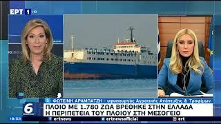 Η ΥφΑΑΤ, Φωτεινή Αραμπατζή στο Δελτίο Ειδήσεων της ΕΡΤ1 για το πλοίο Elbeik (9/3/2021)
