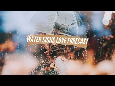 💧 WATER SIGNS JUNE 2019 LOVE FORECAST💧Twin Flame Reading