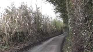preview picture of video 'SWC Free Walk 82, Hayes to Knockholt. 16/2/13.'