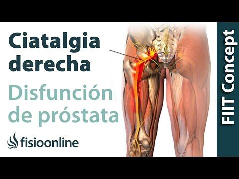 Carica biopsia prostatica