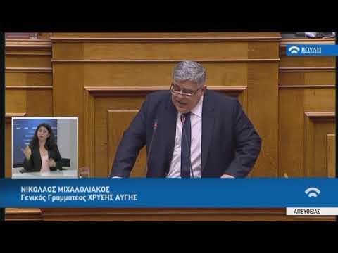 Ν.Μιχαλολιάκος(Γεν.Γραμ.Χρυ.Αυγής)(Ψήφος εμπιστοσύνης στην Κυβέρνηση)(08/05/2019)