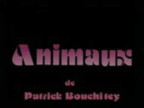 Animals sexual