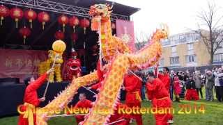 2014 Chinese New Year Rotterdam February