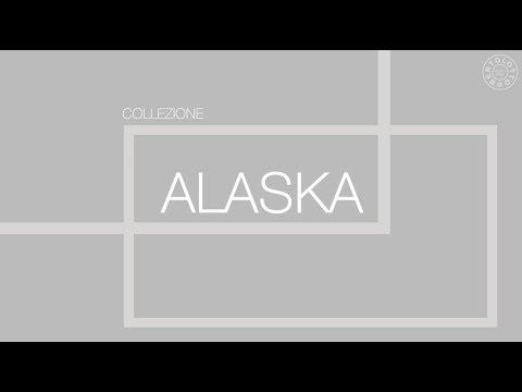 ALASKA: Funzionalità ed Estetica per una Tecnologia Unica. logo