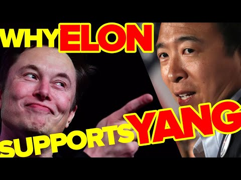 Panel: Why Elon Musk is supporting Andrew Yang