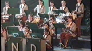 ViJoS Drumband Spant 2000